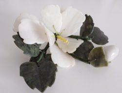 Jade - bloem - wit